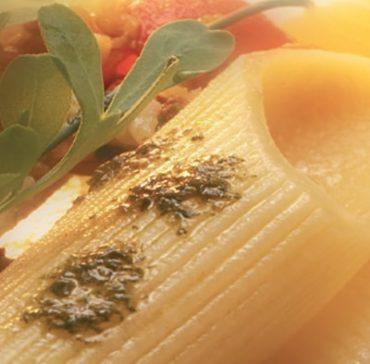 ricetta-pennone-ai-fasolari-e-asparagi-di-mare-galleria-01-min